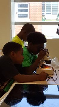 Students using a microscope.